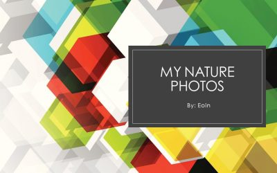 Nature around me by Eoin