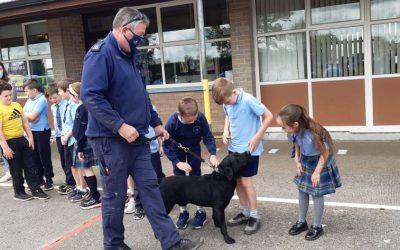 Garda Dog Unit pay us a visit!