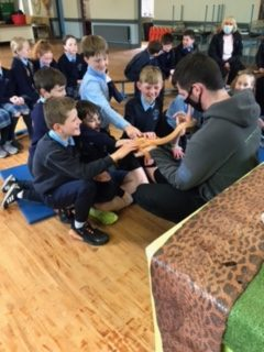 3rd and 4th get a visit from the reptile zoo.