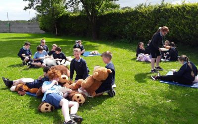 First and Second Class Picnic