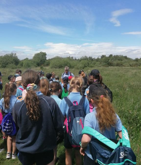 3rd and 4th Class School Tour