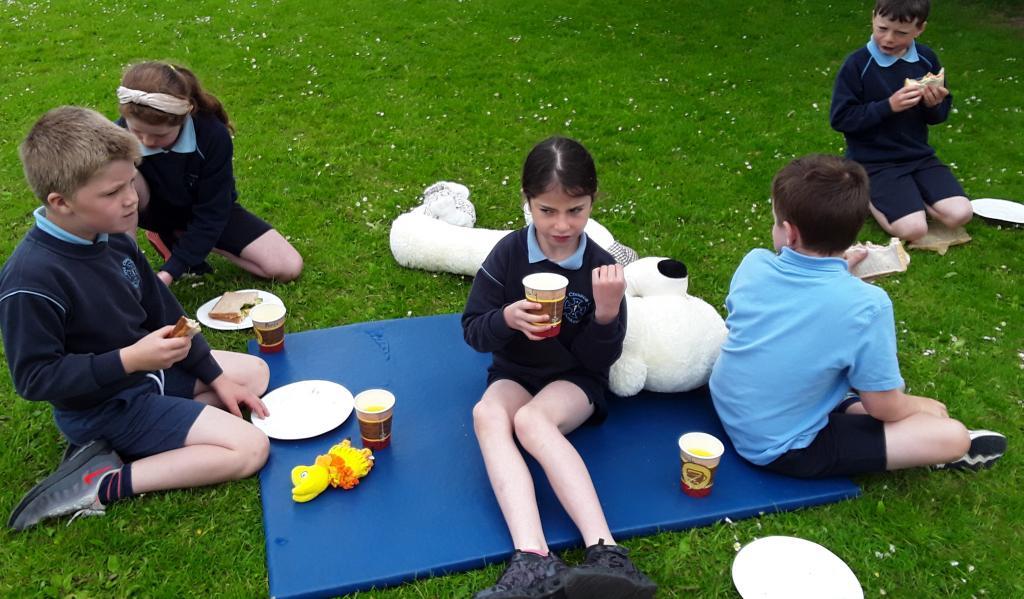Teddy bear's picnic 5