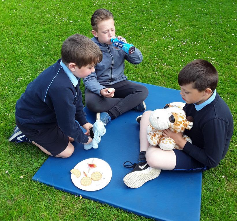Teddy bear's picnic 6